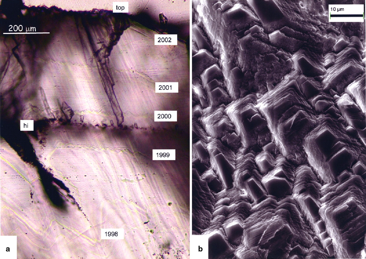 Petrology and geochemistry of annually laminated stalagmites from ...
