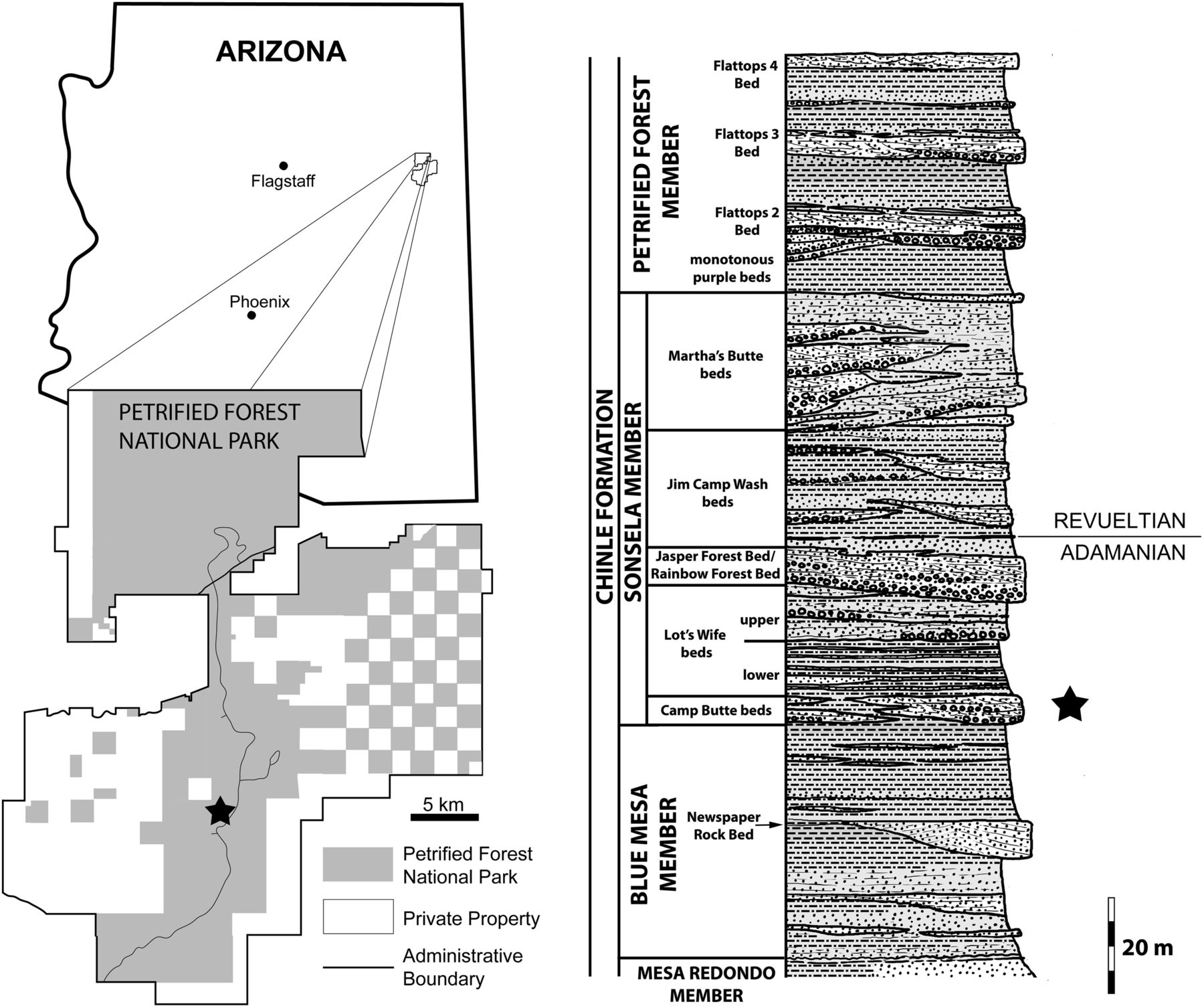 Biostratigraphic dating relies on camp