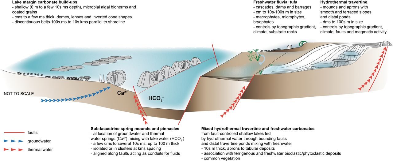 Carbonate build-ups in lacustrine, hydrothermal and fluvial
