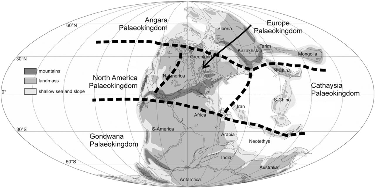 A global review of Permian macrofloral biostratigraphical