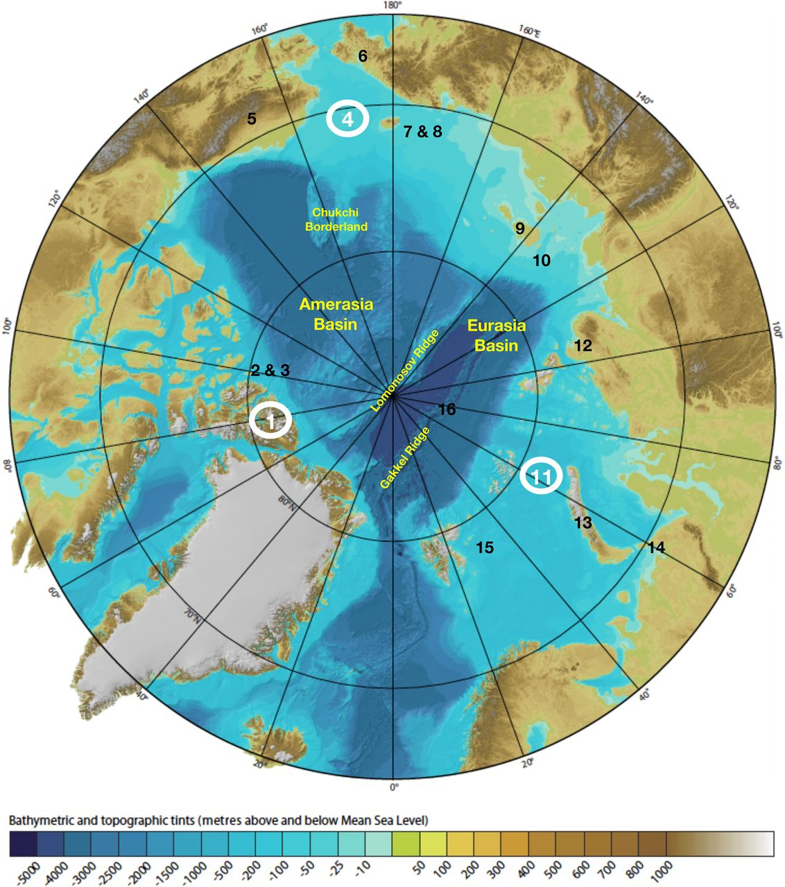 Circum Arctic Lithosphere Evolution Geological Society London