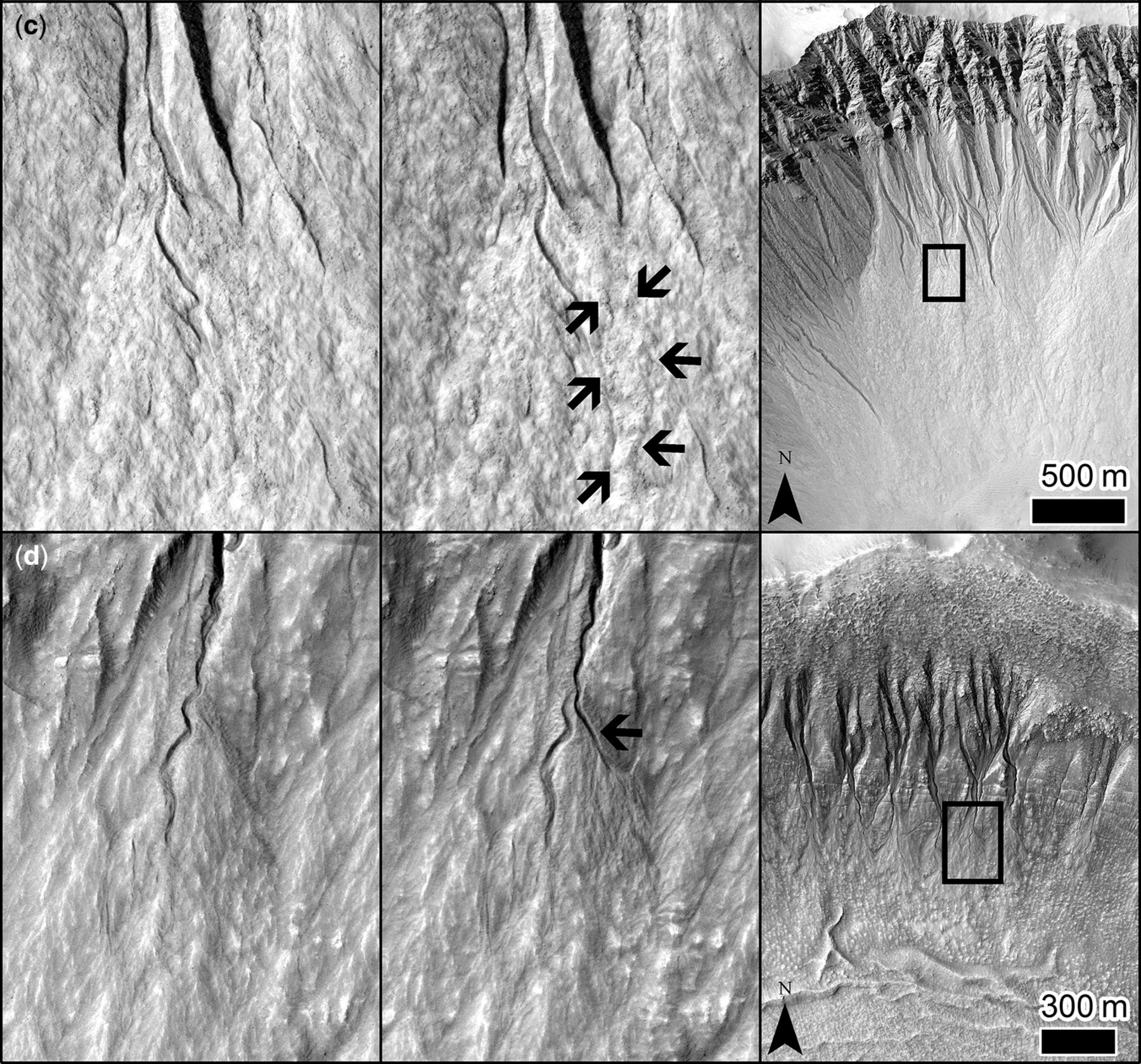 best applications of numerical dating techniques for a tree log buried in a holocene flood