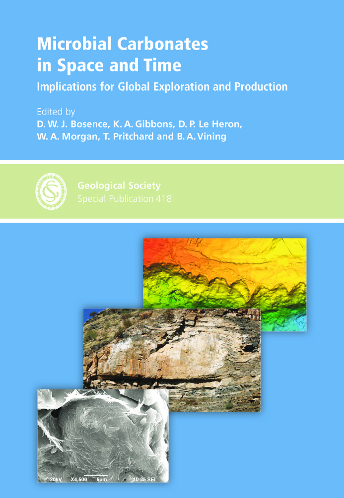 Styles, origins and implications of syndepositional deformation ...